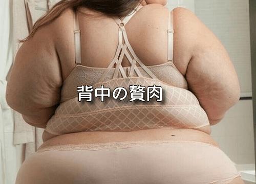 背中の贅肉